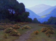 "John Marshall Gamble ""Evening Matilija Canyon [Wild Buckwheat]"" 18 x 24 inches, oil on canvas"